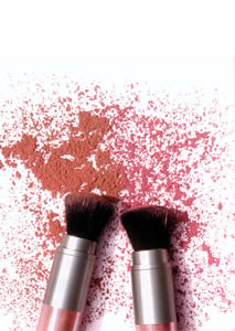 Brushes and make-up powder